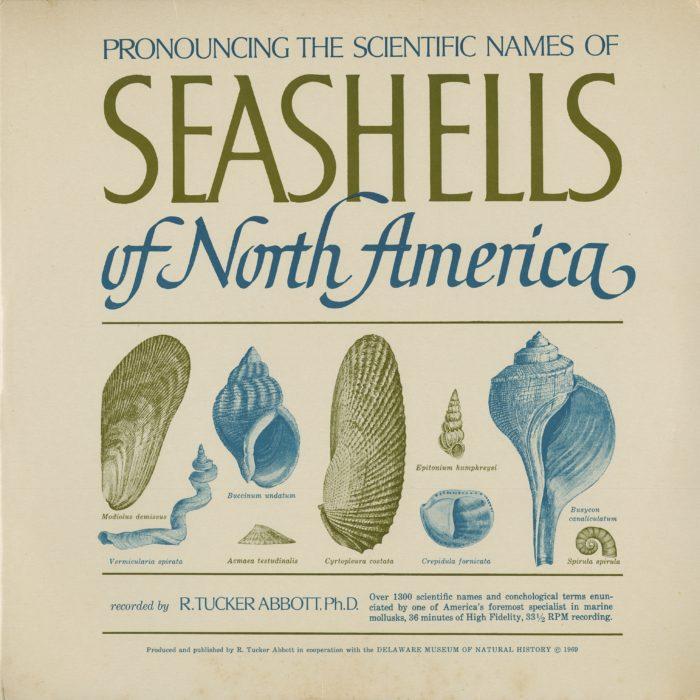 pronouncing the scientific names of seashells record jacket